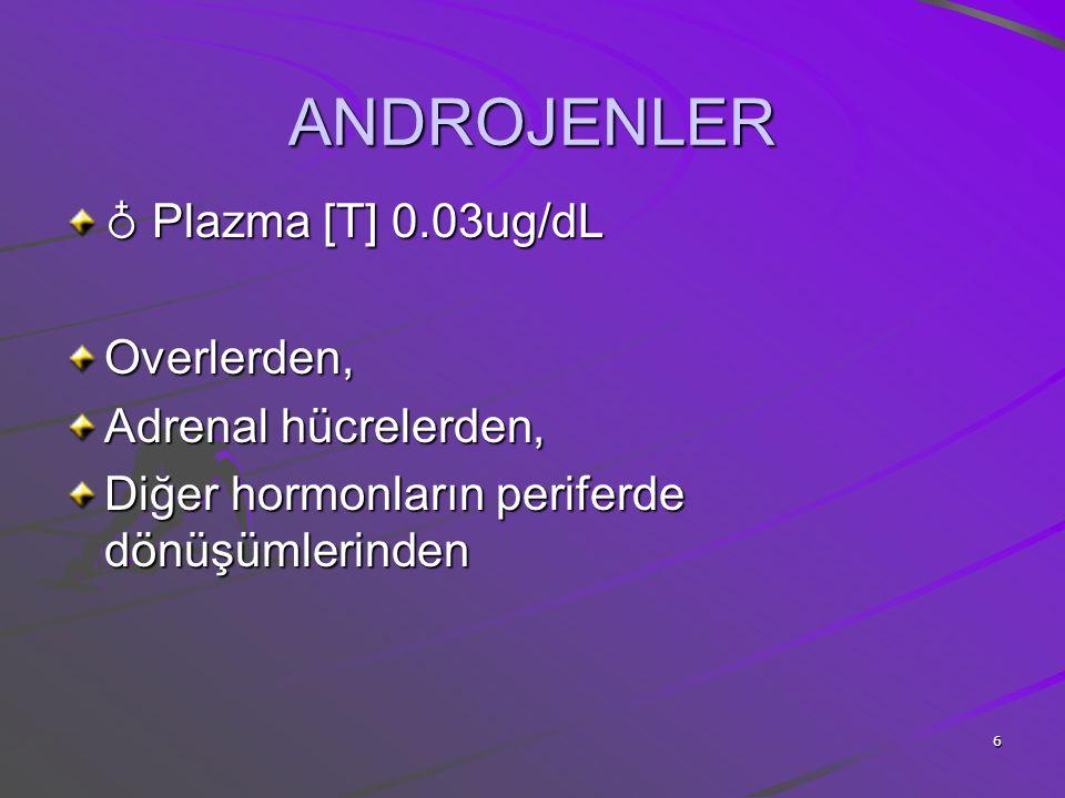 ANDROJENLER ♁ Plazma [T] 0.03ug/dL Overlerden, Adrenal hücrelerden,